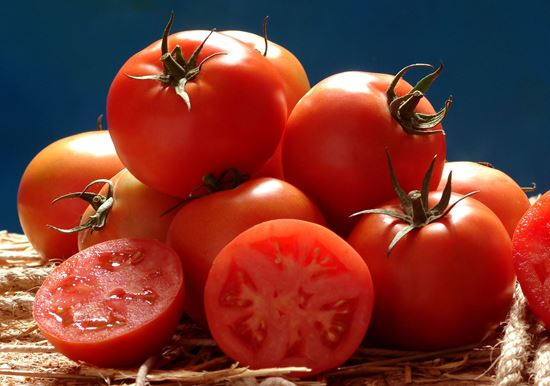 Tomato Determinate F1 Hybrid THURAYA