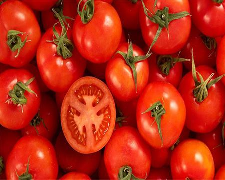 Picture for category Tomato