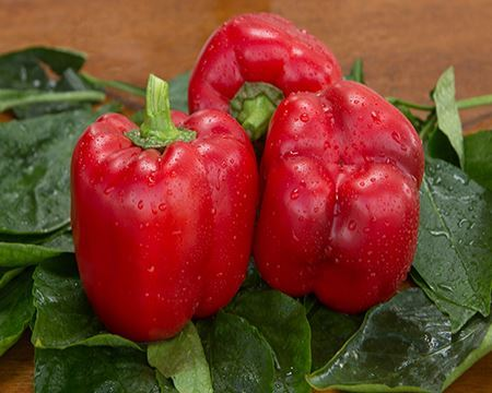 Picture for category Sweet Pepper